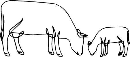 Outline sketch of a cow
