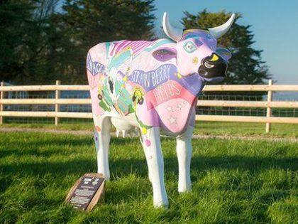 Image of the Festival Time Cow