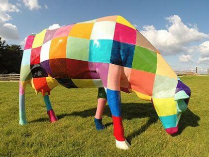 Image of the Patchwork Cow Cow