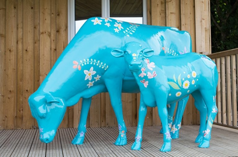 Liz earle cows large