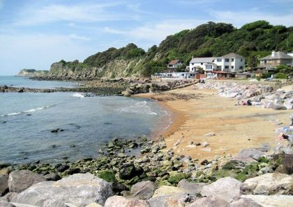 Image of the Steephill Cove, Ventnor Cow
