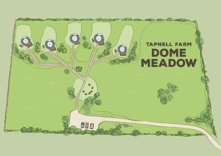 Tapnell Farm New Dome Meadow Site Plan 2020 21