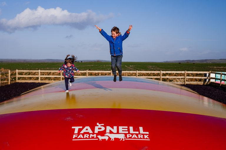 Tapnell Farm Park new bouncy pillow