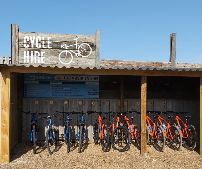 Tapnell Farm cycle hire crop